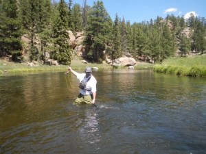Lew Carpenter hauls in a fine South Platte River brown. Photo: Matt Vincent