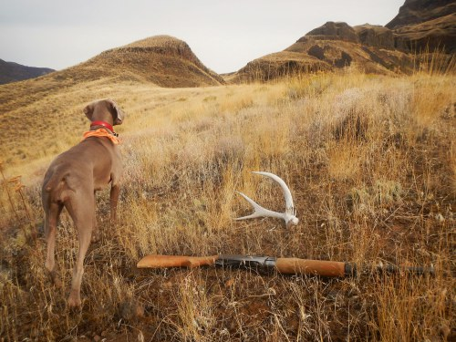 Chukar Hunt Oct 13 thru 17 2014 151